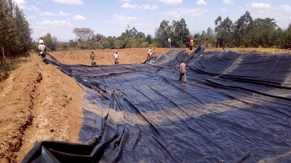 Boror Demo Site Set-up by Nakuru IAP