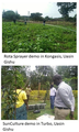 Demo sites set up in Uasin Gishu and IAP meetings