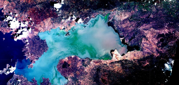 Hyacinth in the Winam Bay captured by Satellite