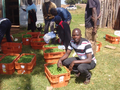 Reflections on Adoption of Smart Water Solutions in Uasin Gishu County - SWA LCB